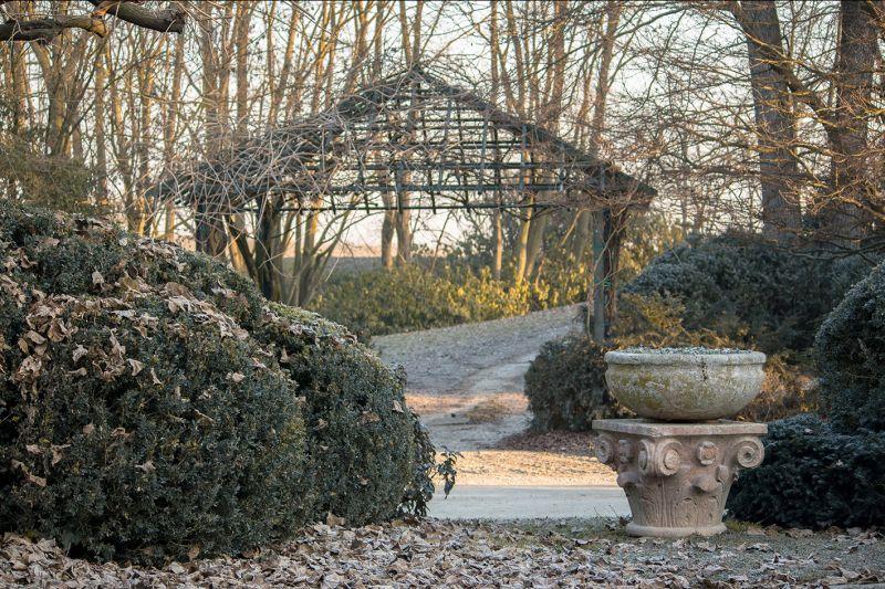 Offerta progettazione strutture giardino-Occasione pergole e gazebi giardino-Bearesi Giardini