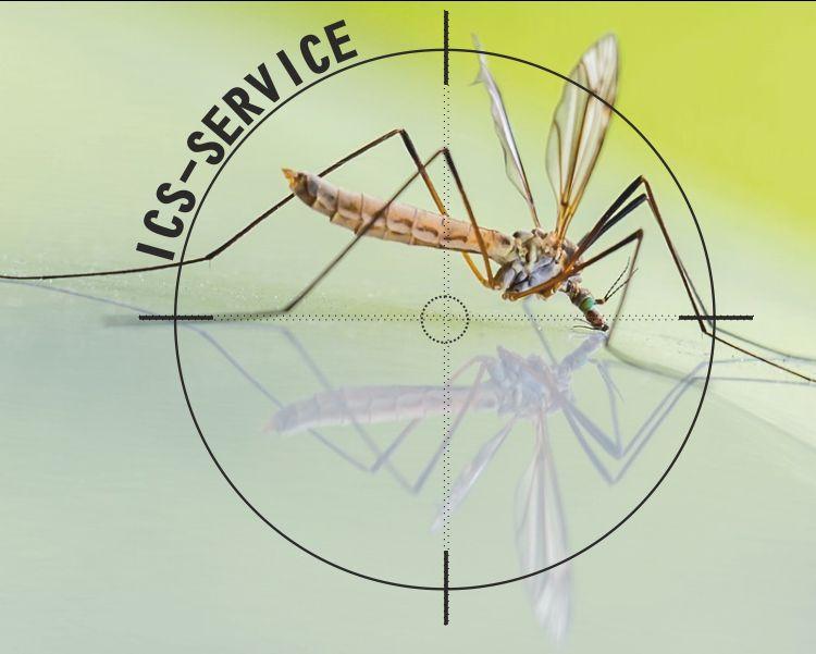 offerta disinfestazioni zanzare ics service-promozione bonifica da insetti ics service