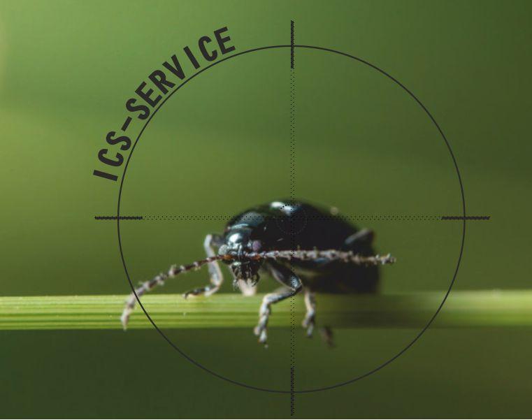offerta disinfestazioni insetti ics service-promozione sanificazione parassiti ics service