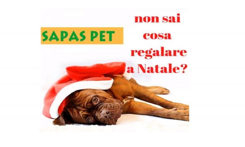 promozione prodotti per animali - offerta negozio animali Arezzo