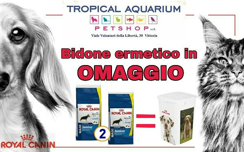 Bidone ermetico in regalo